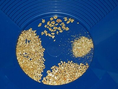 Large_Grain_and_Fine_Placer_Gold