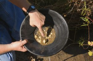 PANNING of PLACER GOLD SAMPLES