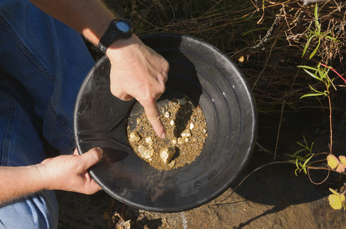 PANNING of ALLUVIAL GOLD SAMPLES
